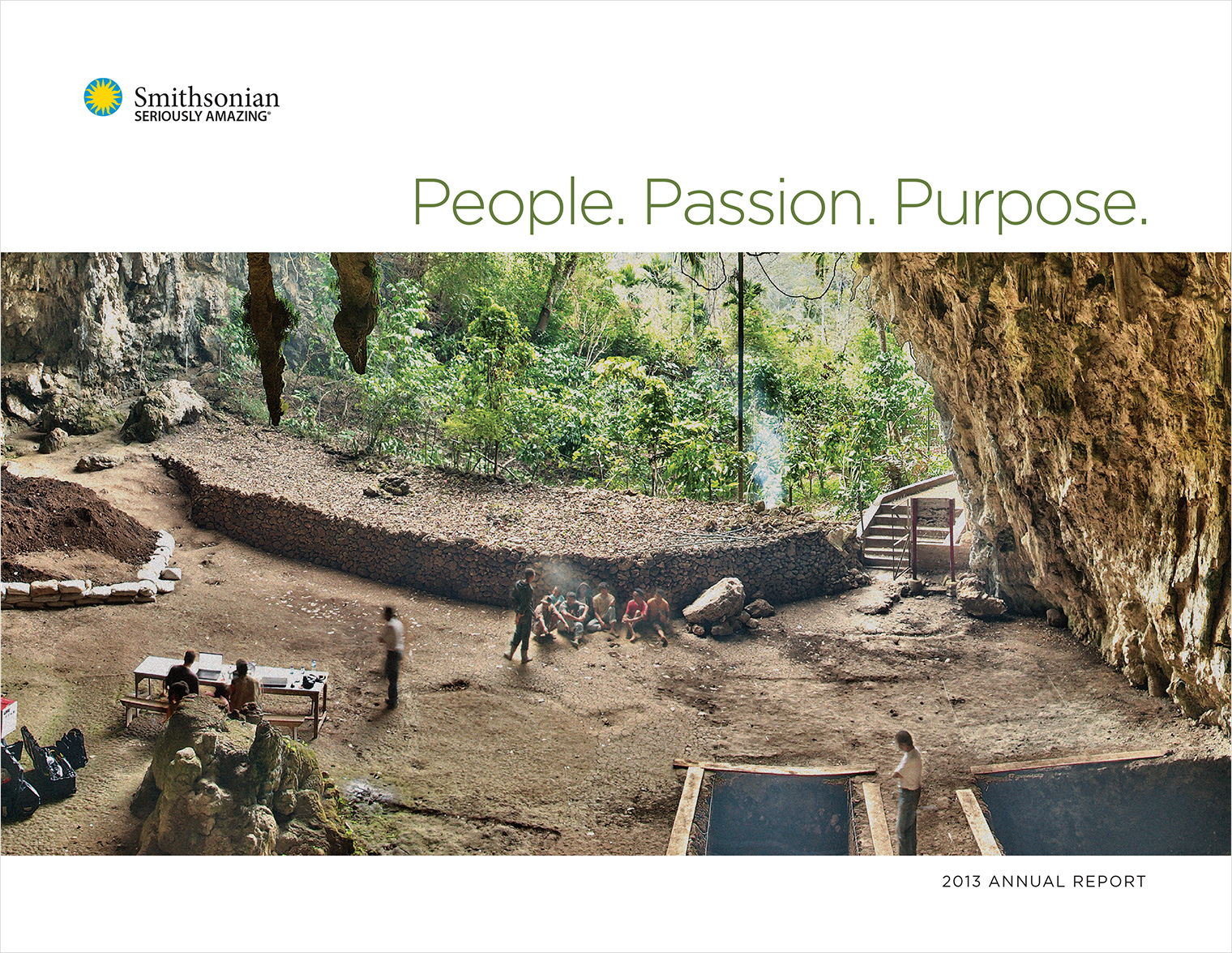 2013 Smithsonian Institution Annual Report