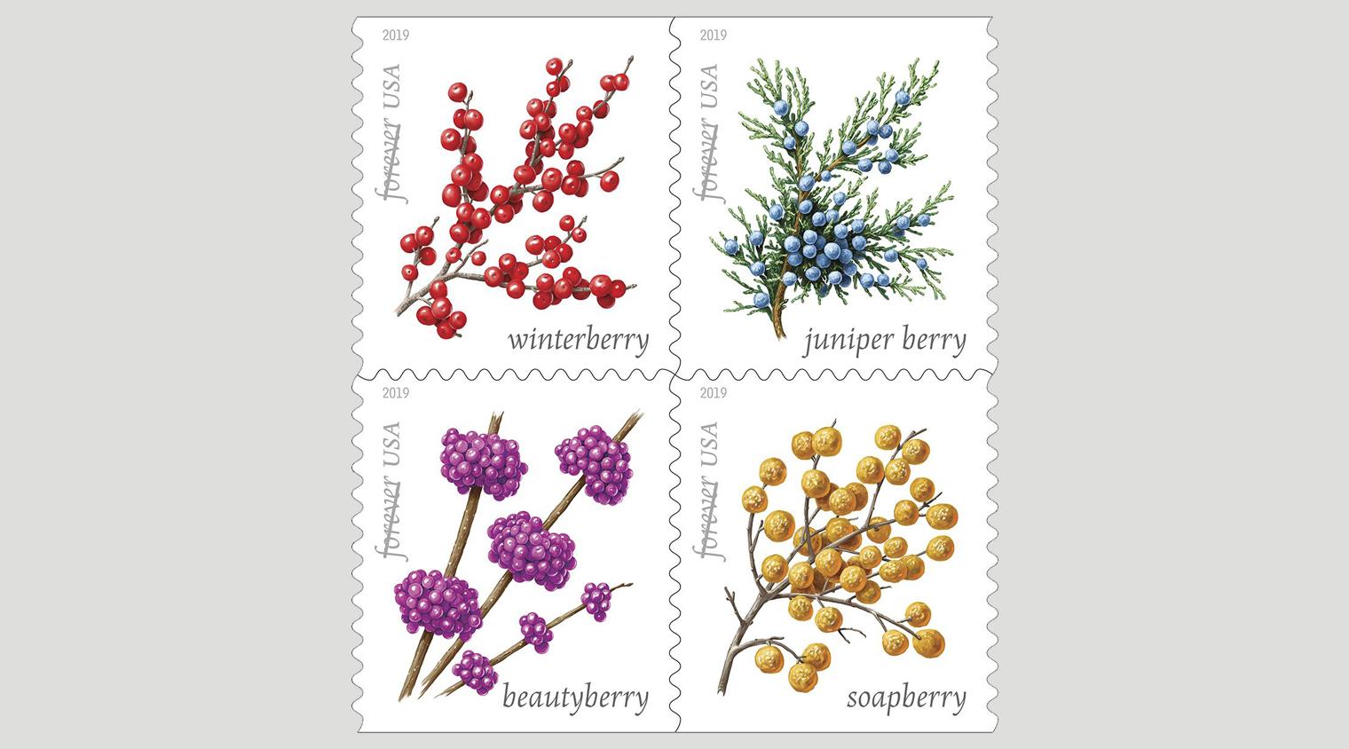 Winterberry Stamp